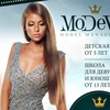 MoDeVie model