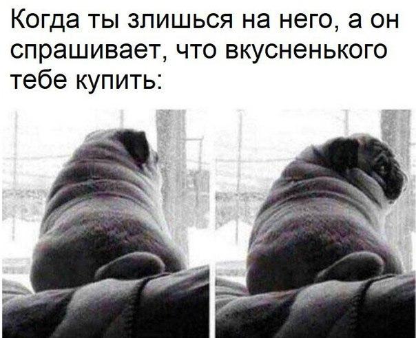Фото №456273350 со страницы Люси Бушуевой