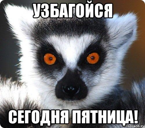 https://pp.vk.me/c837432/v837432299/34a3/iht33FrjK0U.jpg