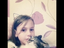 5 Фактов о моей кошке/ Arina Di