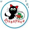 Акварика-Аквариумные рыбки в Красноярске