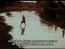 Охота на льва с луком / La chasse au lion a larc 1967
