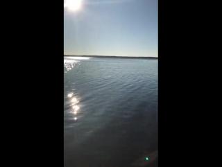 Голая настя на пляже