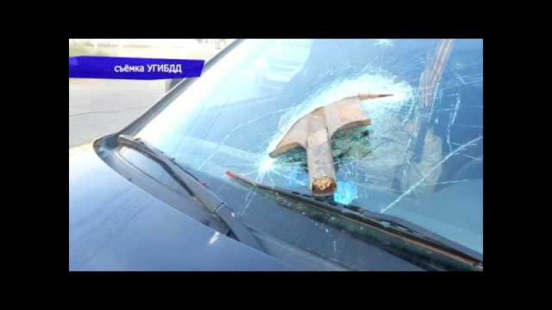 Обзор аварий. ДТП в Кирово-Чепецком районе, пострадала девушка. Место происшеств » Freewka.com - Смотреть онлайн в хорощем качестве