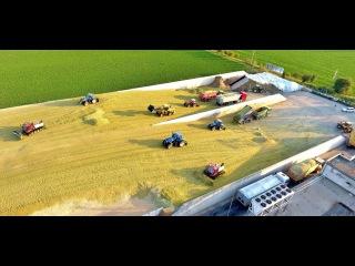 Big Corn Silage Smrzice Czech Republic DJI Phantom 4