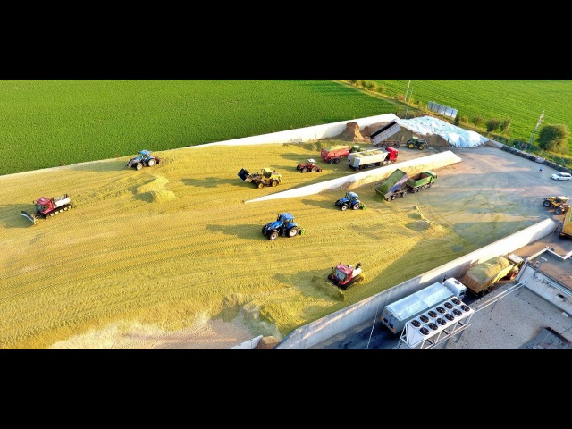 Big Corn Silage Smrzice Czech Republic