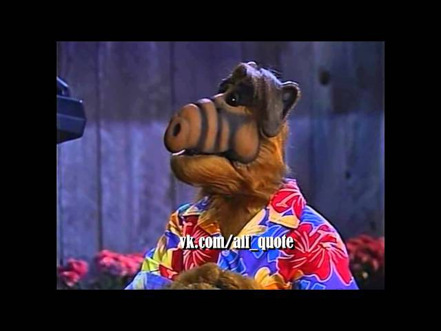 Alf Quote Season 4 Episode 9 Альф ищет Лаки