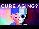 How to Cure Aging – During Your Lifetime?