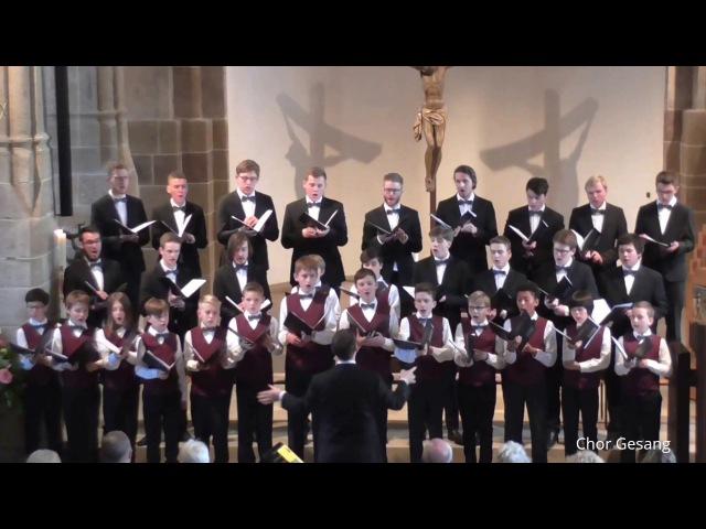 Knabenchor capella vocalis Tröst die Bedrängten J. Brahms (Martinskirche Sindelfingen 13.05.2017)