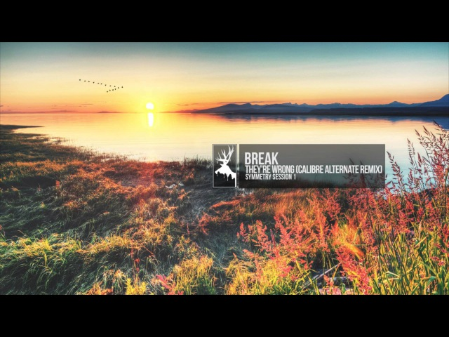 Break - They're Wrong (Calibre Alternate Remix)