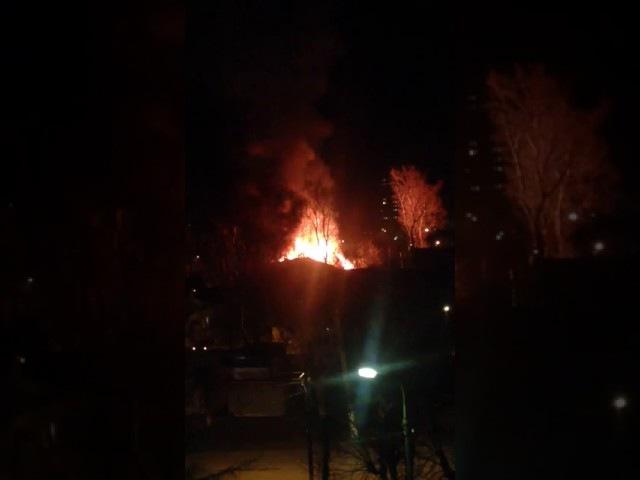 Под Киевом тушили большой пожар (29.03)