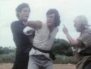 1979 - Секрет шаолиньского кунг-фу / Hu die shi ba shi (The Secret Shaolin Kung Fu)