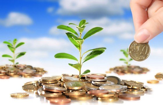 🌱Вырасти свое денежное дерево в месте с нами🌱🔥Получай большие бонусы