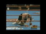 Майк Тайсон нокаутирует Боту / Tyson vs Botha