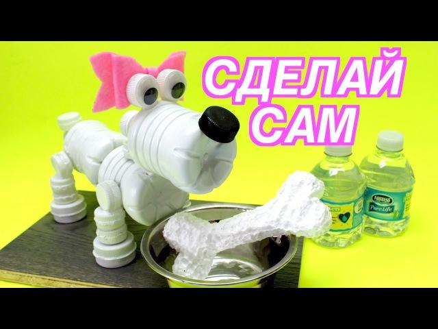 Крутые Поделки и Игрушки Своими Руками Как Сделать Собаку из Пластиковых Бутылок