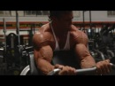 MY NEW ARNOLD SPLIT BACK BICEPS