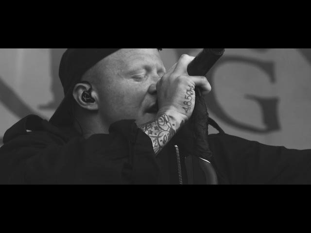 KING 810 - Bloodstock 2017