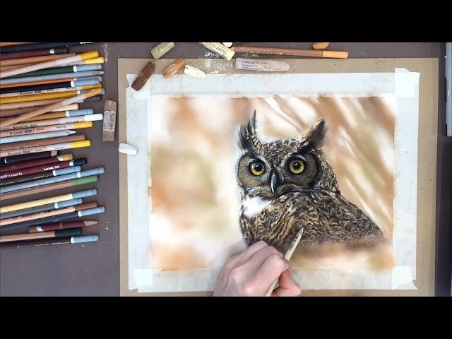 Учимся рисовать СУХОЙ пастелью поэтапно. Рисунок совы от Ермоловой Юлии