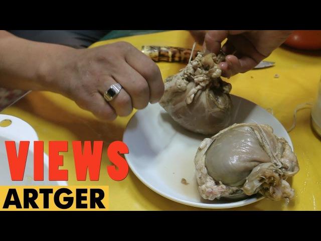 VIEWS: Mongolian Sheep Stomach Dumpling   Traditional Nomadic Cuisine