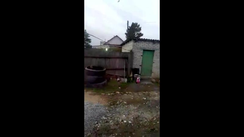 НЛО ударило в окно