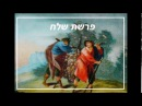 «Шлах» — Рабанит Хава Куперман