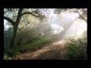 """Шмуэль Ципен, """"ЭКЕВ"""" - ТОРА (Второзаконие 7:12 - 11:25)"""