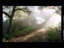 Шмуэль Ципен, ТОРА - ДВАРИМ (Второзаконие 1:1-3:22)