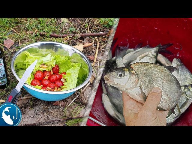 Ловля леща на заброс на фидер осенью. Отличная рыбалка. Готовим на природе. | Рыб ...