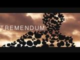 TREMENDUM - 'experimental' diabolo video by Pieter Slachmuylders