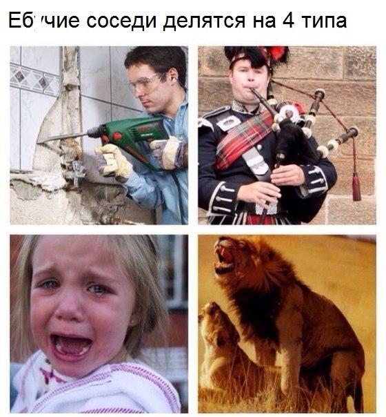 Фото №456245147 со страницы Люси Бушуевой