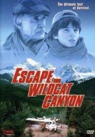 Побег из каньона Дикой кошки / Escape from Wildcat Canyon (1998)