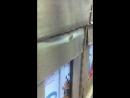 Таракашка в акцепте 2