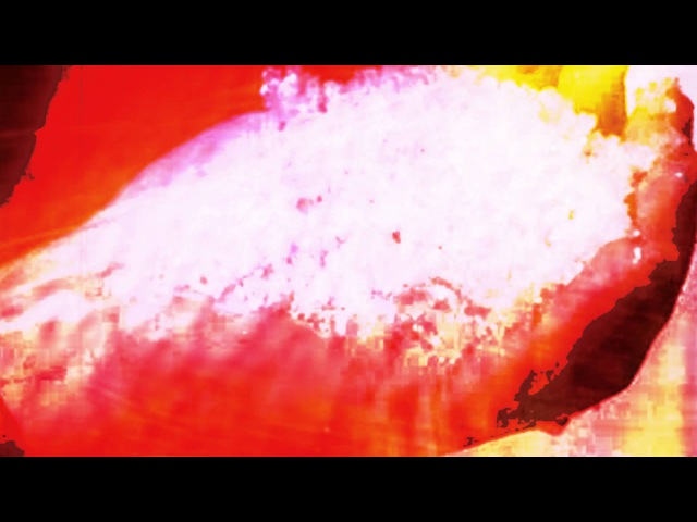 Bellman - Colored By You - Official video