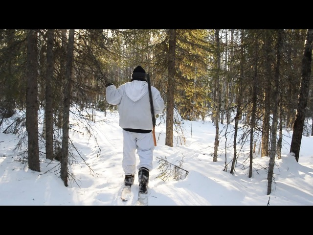 Трейлер Поход в лес Разведка тайга болото лыжи снег