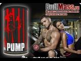 Комплекс Universal Nutrition ANIMAL PUMP от Магазина спортивного питание BullMass.ru