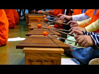 Alexandria Symphony Orchestra launches El Sistema program at John Adams Elementary!!