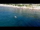 Плавать умею, а нырять не могу