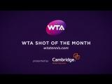 2017 WTA May Shot of the Month - Venus Williams