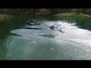 Schwimmen_Neopren