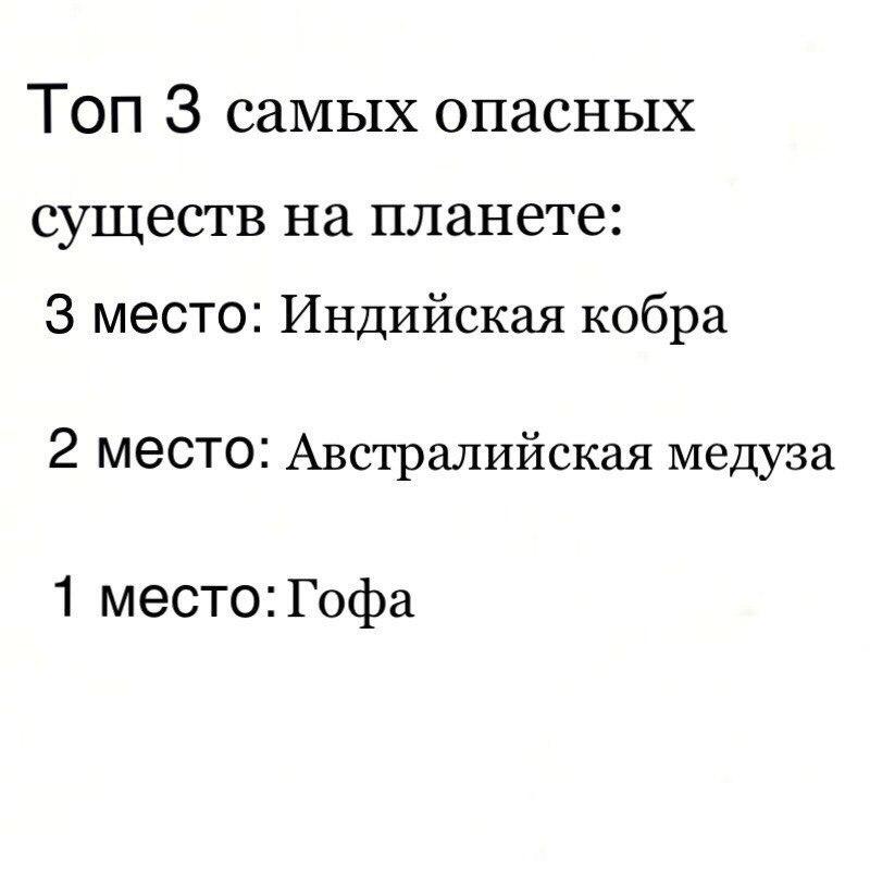 Павел Павлов | Москва