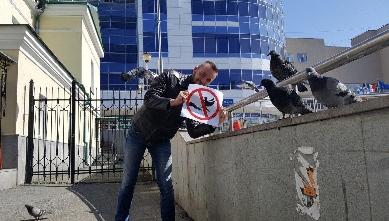 Музей истории Екатеринбурга ищет сотрудника, который будет распугивать голубей— Супергеройская вакансия
