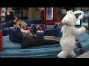 Rabbit fall (kanin faldet) Big Brother DK