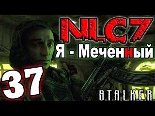 S.T.A.L.K.E.R. NLC 7: Я - Меченный 37. Рыжий лес