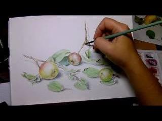 Wild apples watercolor (Рисуем дикие яблоки акварелью)
