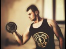 AWESSSFIT STEPAN STOIKA BICEPS TOP