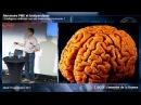 L'intelligence artificielle va-t-elle bouleverser l'économie?