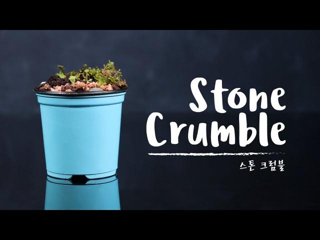STONE CRUMBLE 스톤 크럼블 COOKER FACE
