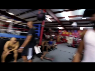 The Thrill of the Fight - VR Boxing