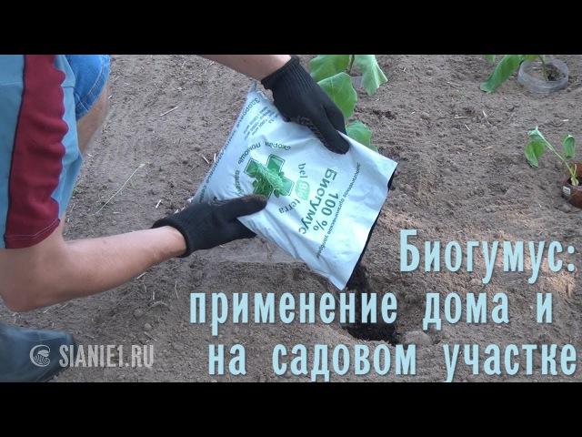 Биогумус Применение дома и на садовом участке