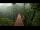 Дождь и гром. Приятные звуки для крепкого сна. 1 Hour Rain and ThunderSleep,Relaxing,Meditation ASMR Sound HD High Quality